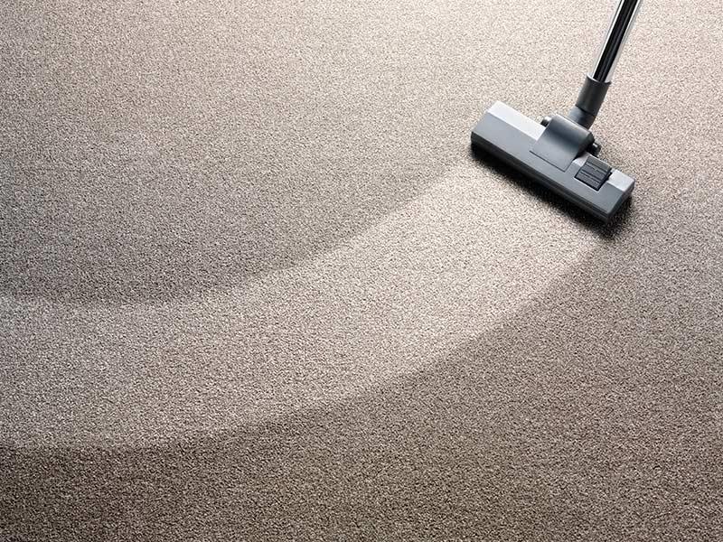 Cómo mantener las alfombras en buen estado? - Grupo Sileb