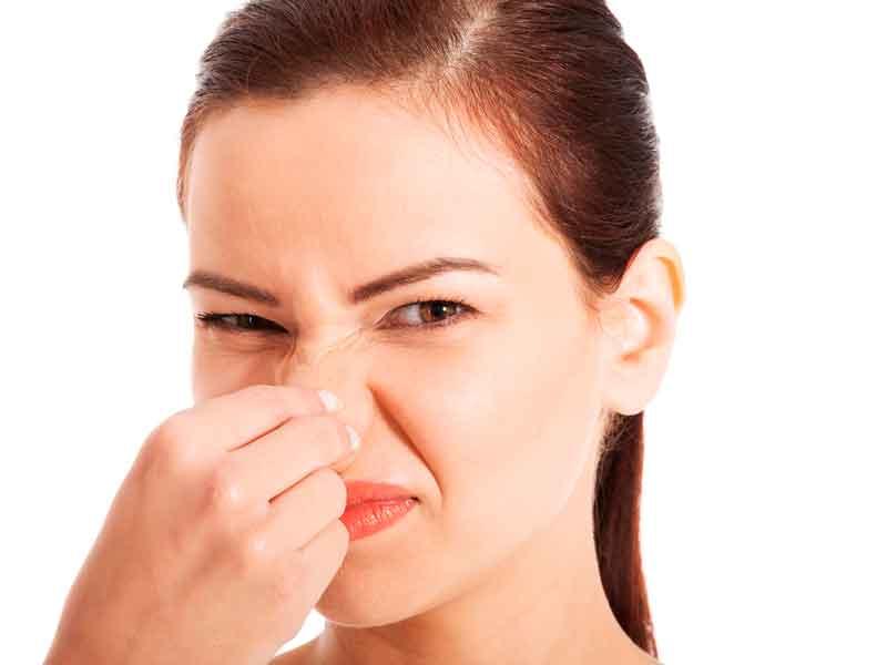 eliminación de malos olores